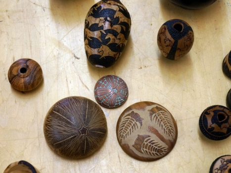 Fossils and urchins