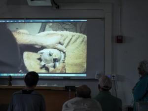 Sally showed time-lapse video of Pat Kramer shaping feet on bowl